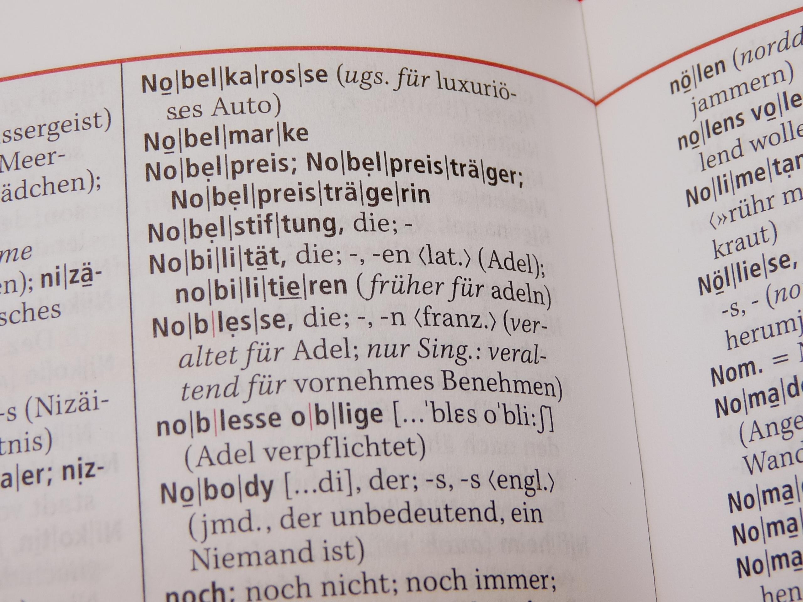 Foto: bei dem Begriff Nobelpreis aufgeschlagenes Wörterbuch